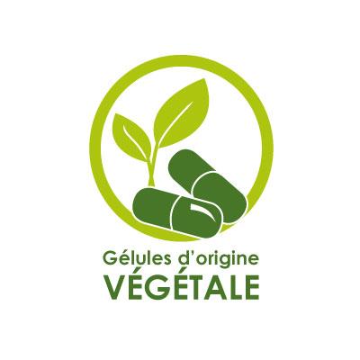 Gélule d'origine végétale